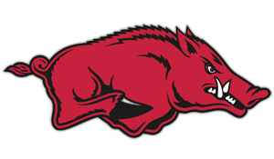 University of Arkansas Razorback College Handbags & Purses